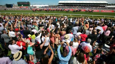 This year will be the first Melbourne Cup without a large crowd urging on the horses.