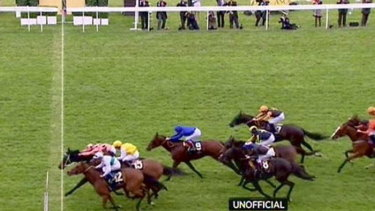Heart-stopper: Black Caviar hangs on to win the Diamond Jubilee Stakes at Ascot.