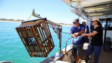 A Mandurah Cruises lobster tour.