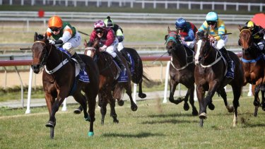 There are eight races scheduled in Goulburn today.