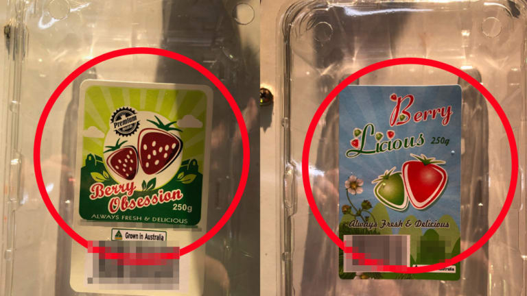 Berry Obsession and Berry Licious, strawberry brands recalled over sewing needle contamination fears.