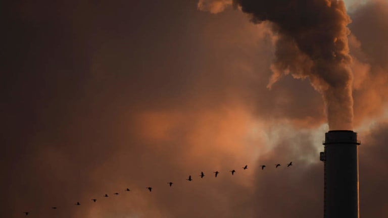 A flock of geese fly past a smokestack at the Jeffery Energy Centre coal power plant near Emmitt, Kansas.
