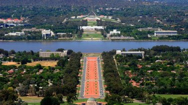 Canberra's urban forest is declining by about 3000 trees a year.