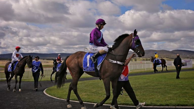 The Fred Cooper Cup is the big one at Goulburn on Thursday.