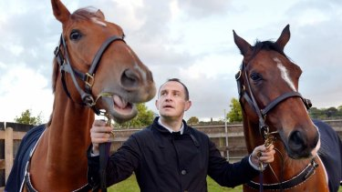 Love is: Chris Waller has a special relationship with his equine charges.