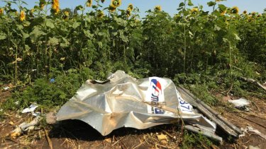 Debris from MH17, which was shot down over Ukraine in 2014.