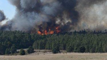 The blaze, which broke out near a pine plantation.