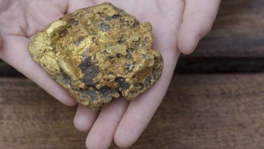 The nugget the Bendigo family found while out for a Mother's Day walk.