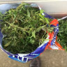 More than $40,000 of cannabis found in vehicle on Queensland highway