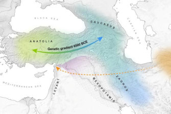 Anatolia (present-day Turkey), the Northern Levant and the Southern Caucasus showing possible migration more than 4000 years ago.