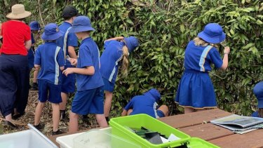 Parents were asked not to bring students to Tamborine Mountain State School because the school bore has run out of water.