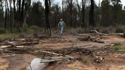 'Inhibit the commission's freedom': Verdict nears on Narrabri coal seam gasfield