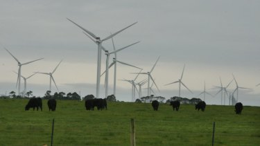 The Macarthur Wind Farm in Victoria drew the attention of parts of the private sector.