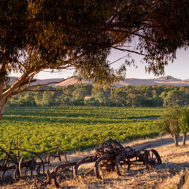 John Duval, a former Penfolds chief winemaker, is building a superb array of wines.