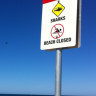Two Perth beaches to install 24/7 shark alarms
