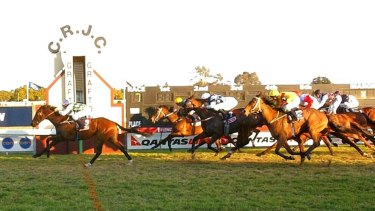 Grafton will host 10 races on a bumper card on Monday.