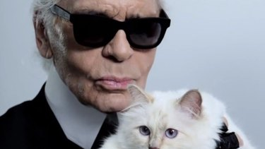 Researchers named one of the spiders in honour of German fashion designer Karl Lagerfeld.