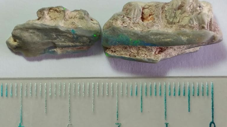 Fragments of 16 mm and 25 mm.