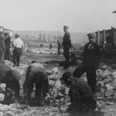 Forced labour in Janowska concentration camp.