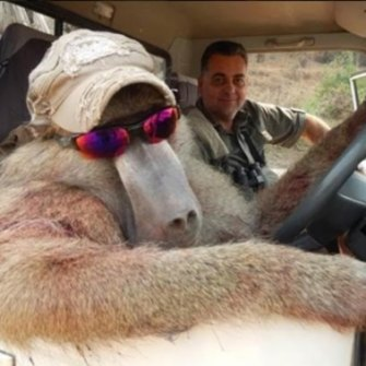 Nick Haridemos was shamed on social media after he posted pictures, including one smiling in a car with a bloodied dead baboon dressed in a hat and sunglasses.