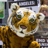 California lawmakers ban exotic animals at circuses