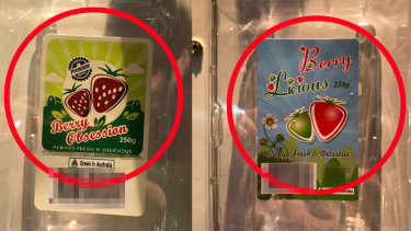 Berry Obsession and Berry Licious, the strawberry brands recalled over sewing needle contamination fears.