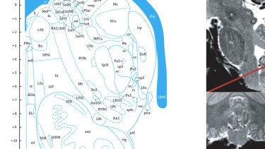 This page, from the Professor's atlas, shows the new region. It is marked ENR, top-right
