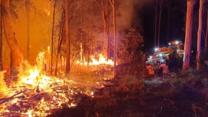What can you do to avoid – or survive – a bushfire?