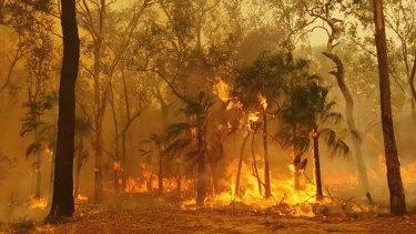 Volunteer firefighter Chloe Hines captured eerie images of blazes in Carnarvon National Park on Wednesday night.
