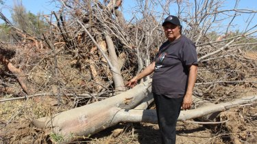 Traditional owner Rosita Shaw was distraught with the unauthorised landclearing at Yakka Munga pastoral lease by Chinese owned Shanghai Zenith.