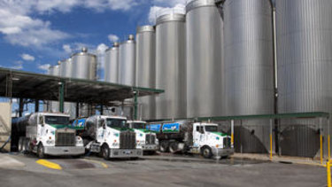 The competition regulator is concerned Murray Goulburn's deal with Canadian Saputo could lead to lower prices for farmers.