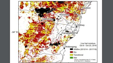 Much of the region around Sydney remains dry even after a damp October, according to moisture maps of live vegetation.