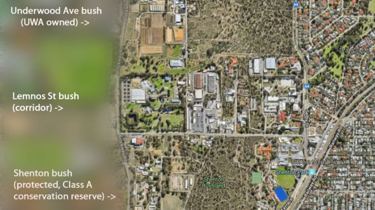 The Lemnos Street bush links two high profile areas of bushland.