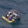 Boatie beats authorities to free whale trapped in Gold Coast nets