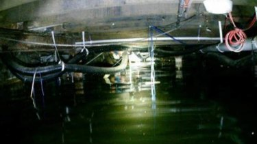The stagnant water was photographed in the Broadway Hotel's basement.