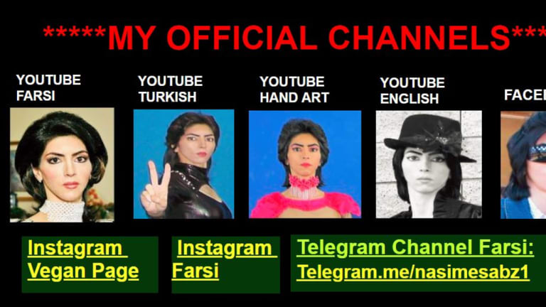 Nasim Aghdam used her personal website to complain about YouTube's advertising policies and advertise numerous other online profiles.
