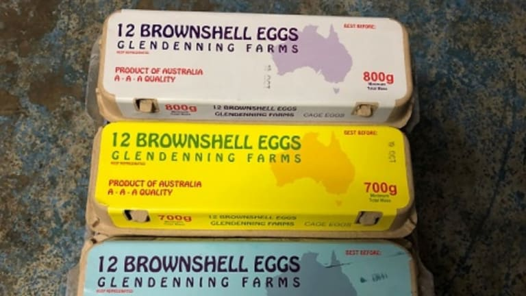 Leading egg retailer Eggz on the Run have voluntarily recalled thier 12 Brownshell Eggs sold under the Glendenning Farms brand after 23 cases of salmonella food poisoning in Sydney's metro area.