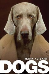Alizart asserts that, in loving dogs, we learn to make peace with a dark part of ourselves.