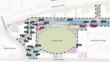 The Woody Meadows plan with blue representing swale planting and pink representing feature planting.