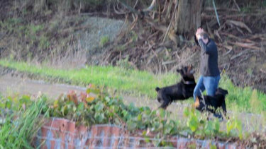 A photo, taken by a neighbour, shows autistic man Oliver Beaumont with his hands on his head moments before he was attacked by two Rottweillers in Winton, New Zealand, on Sunday.