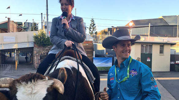 ABC Brisbane radio host hurt after bull fall at the Ekka