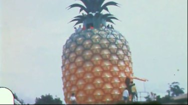 Walton Roy Sinclair's film shows the Big Pineapple before it pans out to the fields.