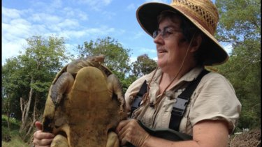Turtle researcher Marilyn Connell with a Mary River turtle.