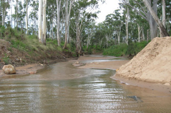The Suttor River in central Queensland, from which Adani intends to pump water to feed its Carmichael coal mine.