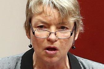 Greens senator Janet Rice questioned how the department managed the conflict of interest.