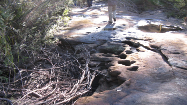 A dried-out creek above the Dendrobium mine in the Special Areas of Sydney's water catchment.