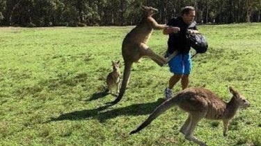 A man is attacked by a kangaroo in the grounds of Morisset Hospital in March.