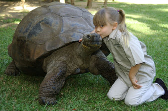Harriet the tortoise lived in Brisbane's Botanical Gardens until she spent her final years at Australia Zoo, where she is pictured with a young Bindi Irwin in 2006.