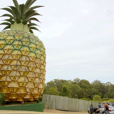 Local tourism icon, The Big Pineapple.