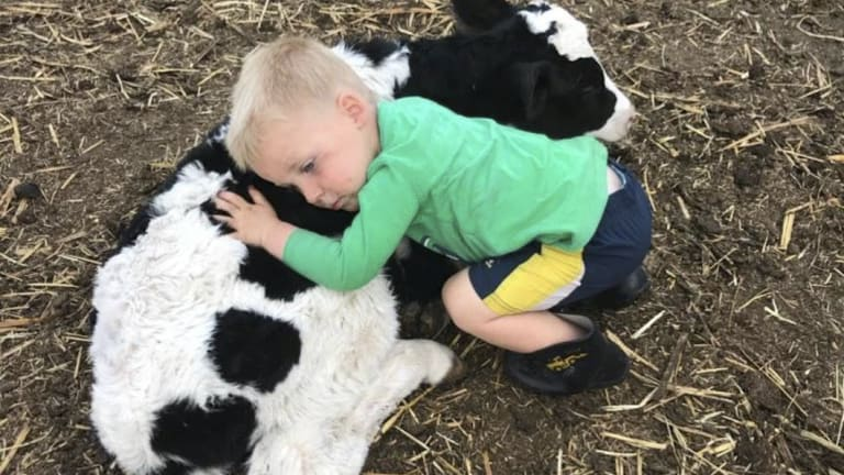 One of the youngest members of the Gamble family, Thomas on their Queensland dairy farm.